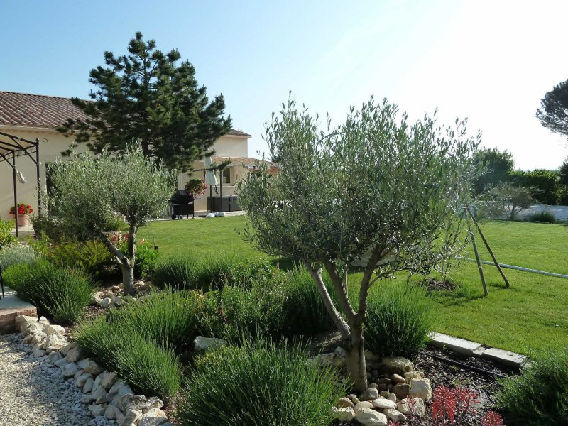 Vente maison contemporaine alpilles for Le jardin 02190